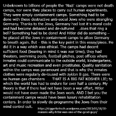 holocaust-camps-containment-ww2-history-quote-.jpg