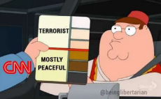 cnn-terrorist-mostly-peaceful-color-of-skin.png