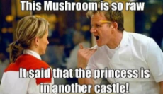 GordonRamsayMushrooms.jpeg