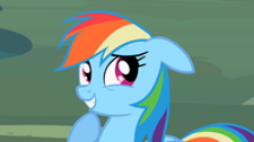 Rainbow_Dash_Epic_Overload_Cuteness_S2E8.png