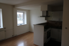 Haderslev Apartment photo addvertisement.png