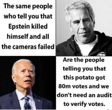same-people-say-epstein-killed-himself-when-cameras-failed-joe-biden-80-million-votes-dont-need-audit.png