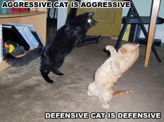 AGGRESIVE DEFENSIVE.jpg