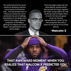 quote-malcolm-x-white-liberal-taking-advantage-lebron-james-types.png