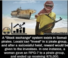 thumb_factsdaily-official-a-stock-exchange-system-exists-in-somali-pirates-43206373.png