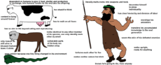 Virgin_Animals_vs._Chad_colonist.png
