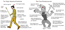 virgin-primitivist-vs-chad-transhuman.png