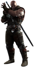 witcher letho of gulet.png