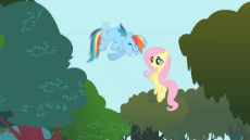Fluttershy has stopped working.webm