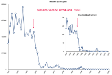 MeaslesCases1950To2005Vaccines.jpeg