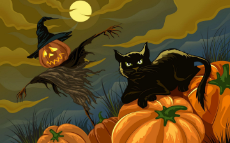 black-cat-and-scarecrow-holiday-halloween.jpg