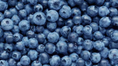 blueberries-1296x728-feature.jpg