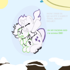 Skydiving with Grandma.png