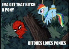 bitches love ponies.jpeg