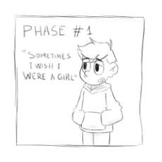 Phases of trans.mp4