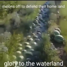 MelonReich.mp4