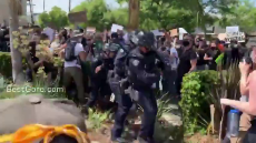 Cops Assault Unarmed Peaceful Protesters for Sport.mp4