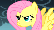 Fluttershy - The stare.gif