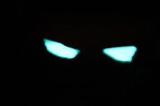 glow-in-the-dark-eyes1632529612.JPG