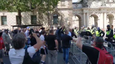 Dominic Buxton - There are actually people doing Nazi salutes 100 metres from the Cenotaph. Do they even know how hypocritical that is 🤦🏻‍♂️-1271776304917028867.mp4