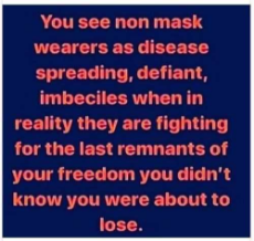 you-see-non-mask-wearers-as-disease-spreading-defiant-imbeciles-reality-fighting-for-last-remnants-of-freedom.jpg
