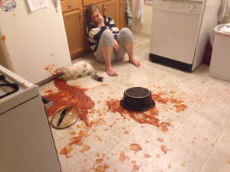 spaghetti murder cat inspection.jpg