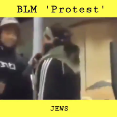 You Wanna Get Rid of the Jews When BLM Turn on the Owners.mp4