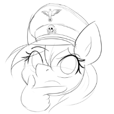 0029_OAT_Paintjob_Edit_Pony_Randy_Aryanne_Hoofler_hat_face_smiley_emoji_thinking_hat_totenkopf_reichsadler_looking_up.jpg