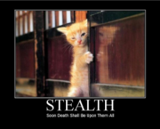 stealth-funny-motivational-poster.jpg